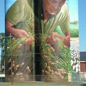 The Peanut Farmer