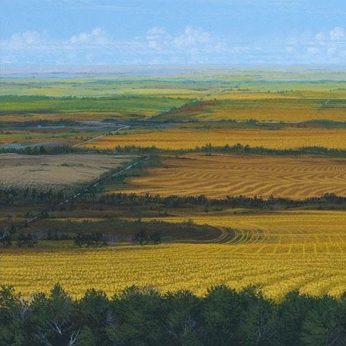 Prairie Expanse