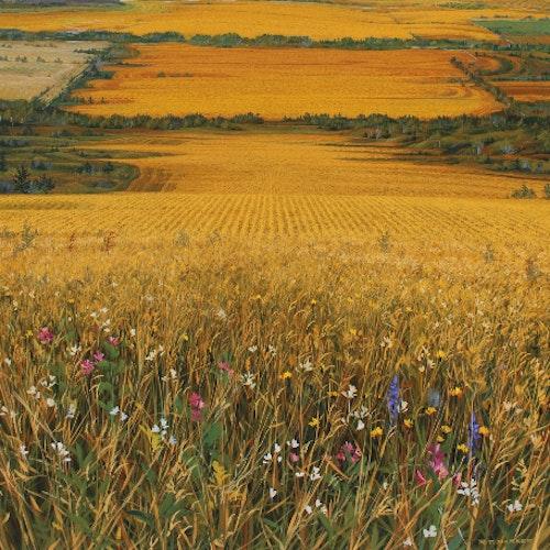 A Prairie Vision