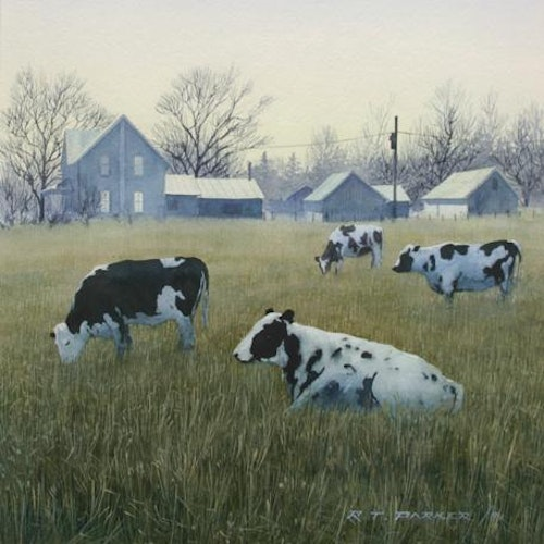 Cows under the Moon