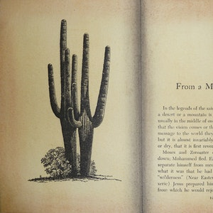 Cactus and Ice Hole