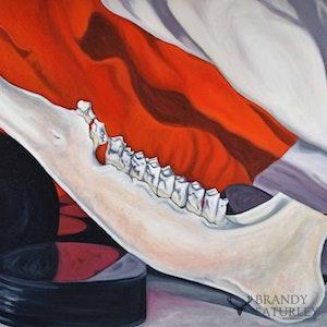 Rubber & Bone (Canadian still life)