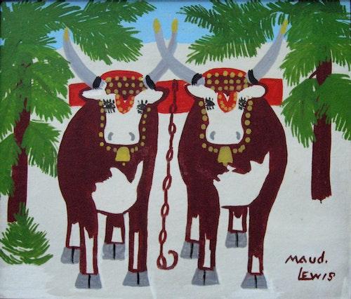 Oxen in Winter