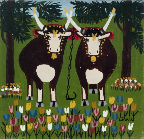 Oxen and Tulips