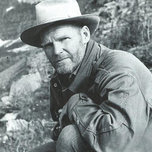 Clarence Tillenius Canadian Wildlife Artist | eBay