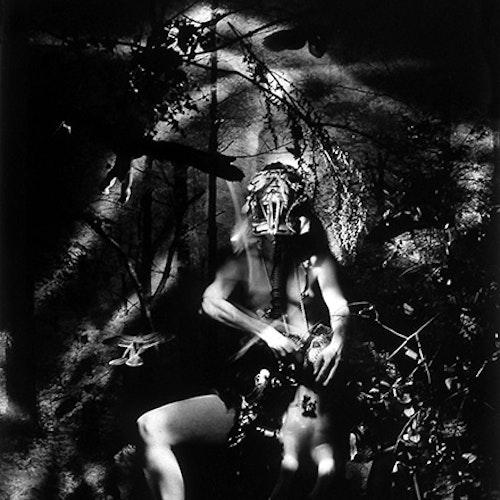 Untitled (Centaur in the Garden)