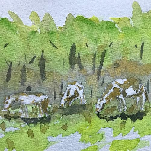 horses grazing the catskills